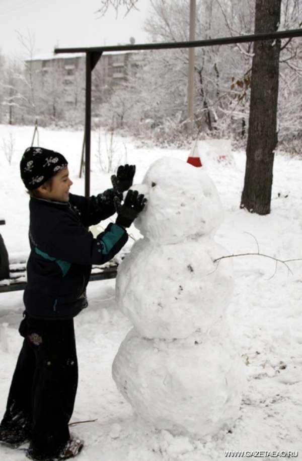 Биробиджан в снеговиках и льдах