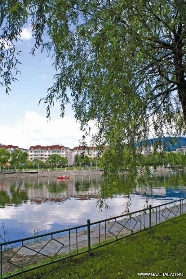 Город Ичунь — лесная столица