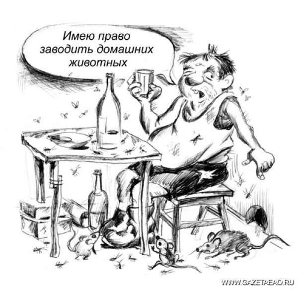 «Кто в доме хозяин — я или тараканы?» - Рисунок Владислава Цапа