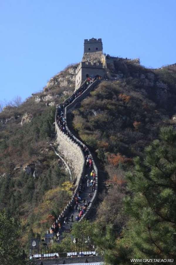 Пекин – город ласточек. Картинки без птиц