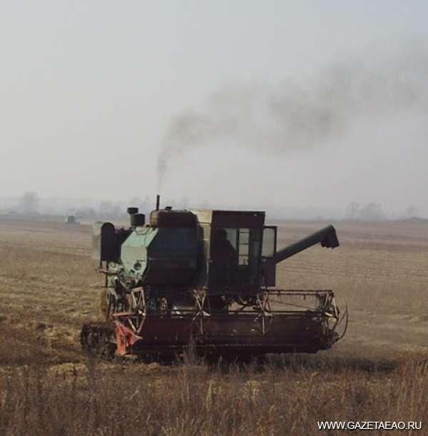 Нина ФИЛИППОВА: «Наши фермеры научились работать не хуже китайцев»