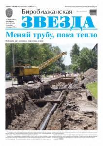 Биробиджанская Звезда - 51(17141) 12.07.2013