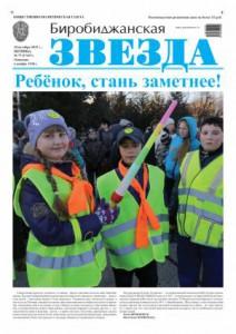 Биробиджанская Звезда - 77(17167) 18.10.2013