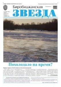 Биробиджанская Звезда - 83(17173) 13.11.2013