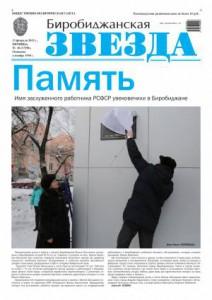 Биробиджанская Звезда - 10(17290)13.02.2015