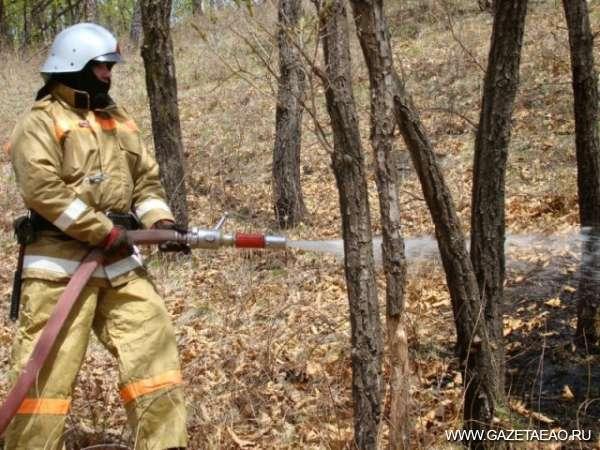 Лес от огня защитить