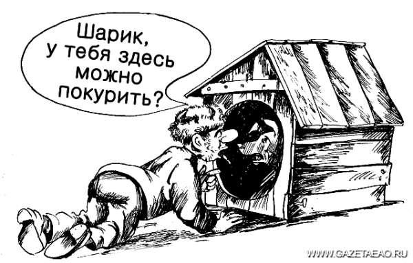 Не дымите на меня - Рисунок Владислава ЦАПА