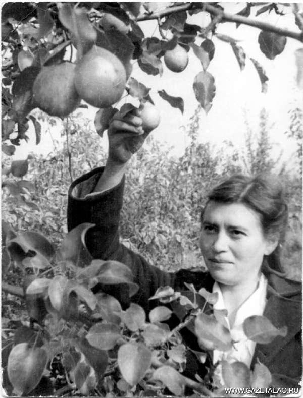 Здесь будет область-сад - В грушевом саду  Биры. 50-е годы.