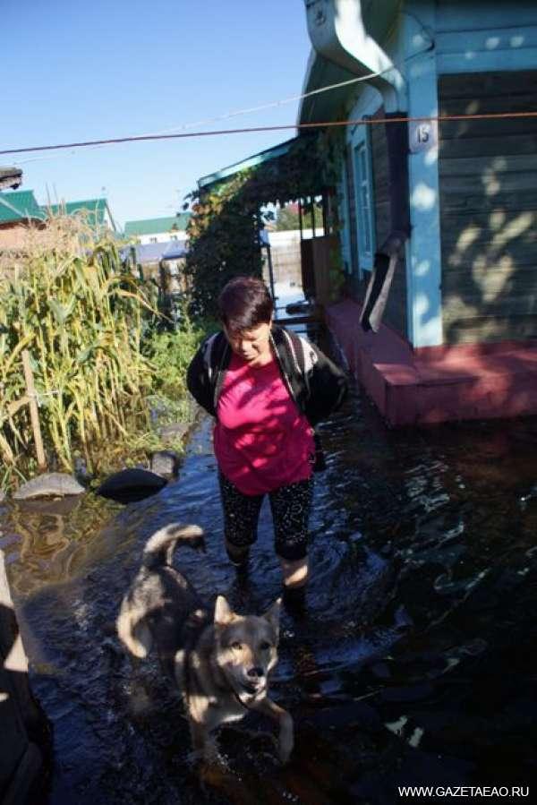 Когда угроза наводнения миновала - Подтопленная усадьба в Биробиджане.