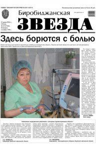 Биробиджанская Звезда - 43(17416) 15.06.2016