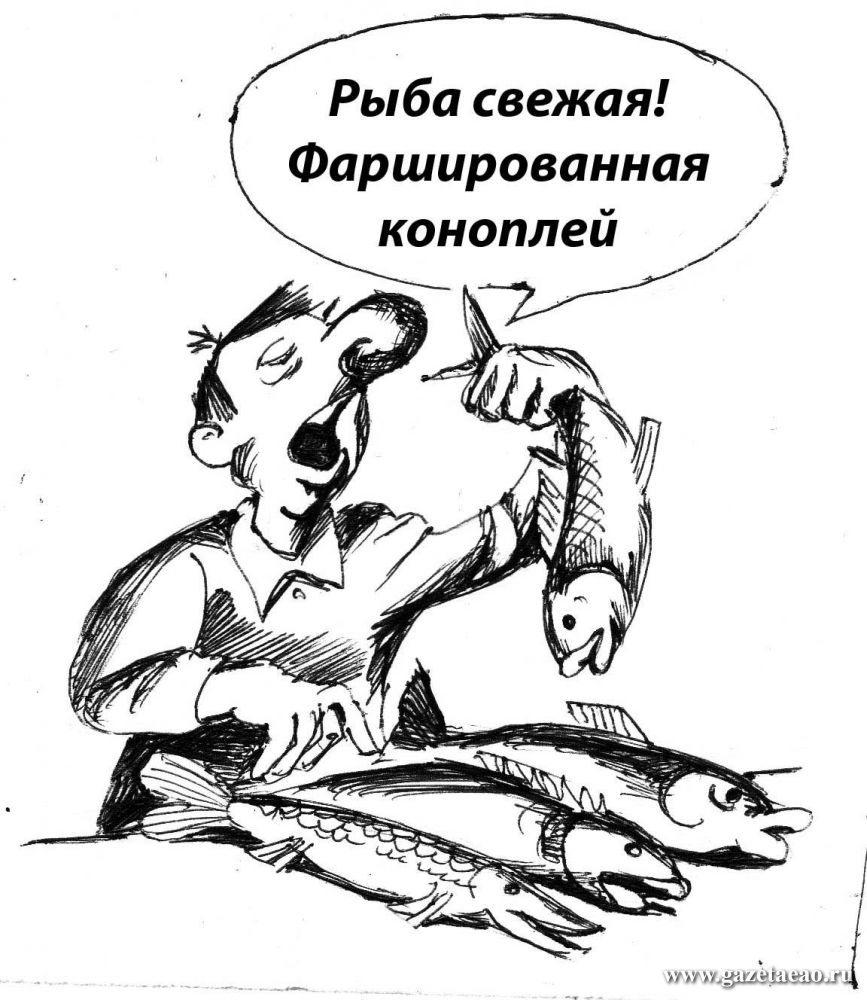 Рыба ни при чём