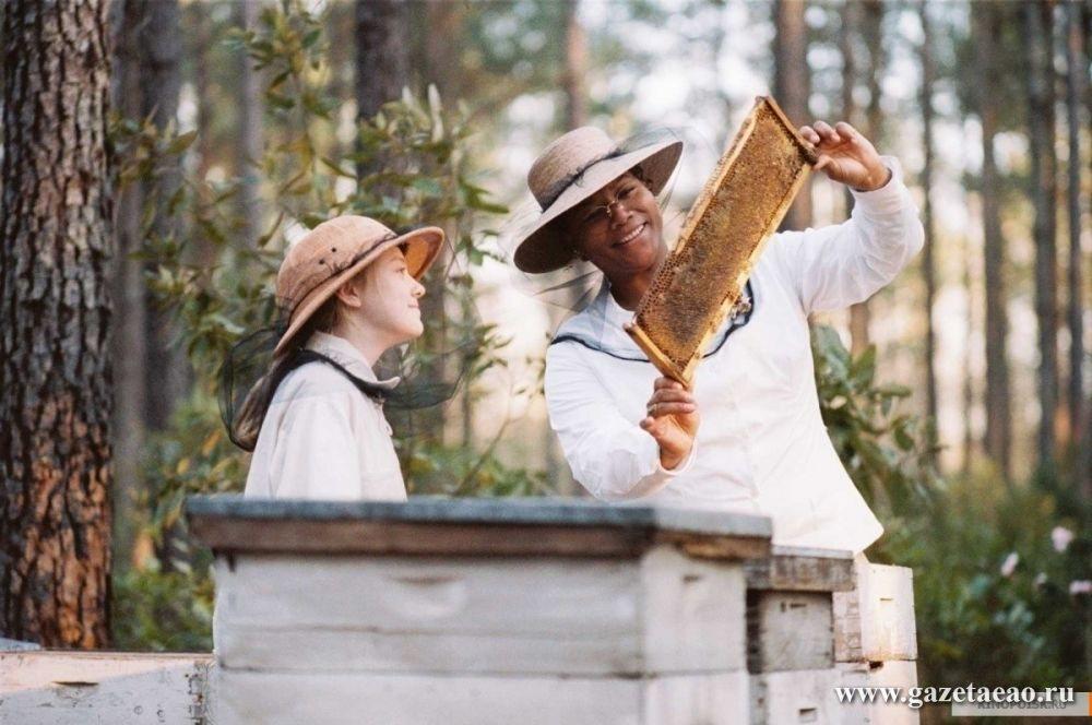 """Сью Монк Кидд - Кадр из фильма """"Тайная жизнь пчел"""" (режиссер Джина Принс-Байтвуд)."""