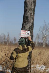 Табличка указывает: здесь аистиное гнездо
