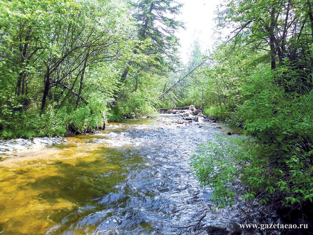 - На фото aivengo-tours.ru: река Кульдур с чистой и целебной водой должна такой и остаться.