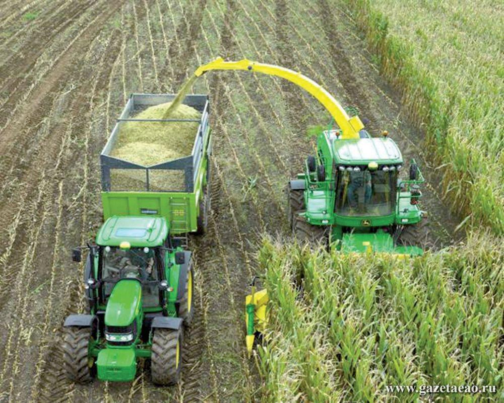 Климат для сои и силоса - Уборка кукурузы на силос