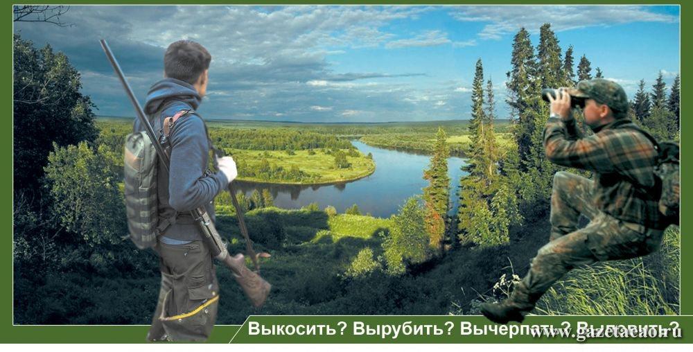 Пойду в лес…  за землей