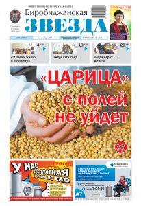 Биробиджанская Звезда - 49(17494) 13.12.2017