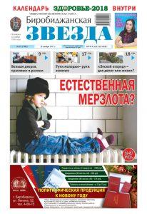 Биробиджанская Звезда - 47(17492) 29.11.2017