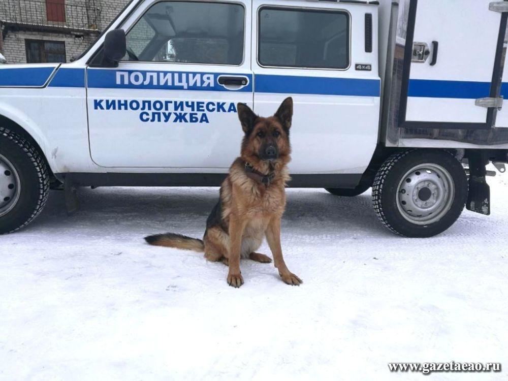 В Биробиджане служебная собака вывела на след подозреваемого в краже аккумуляторов