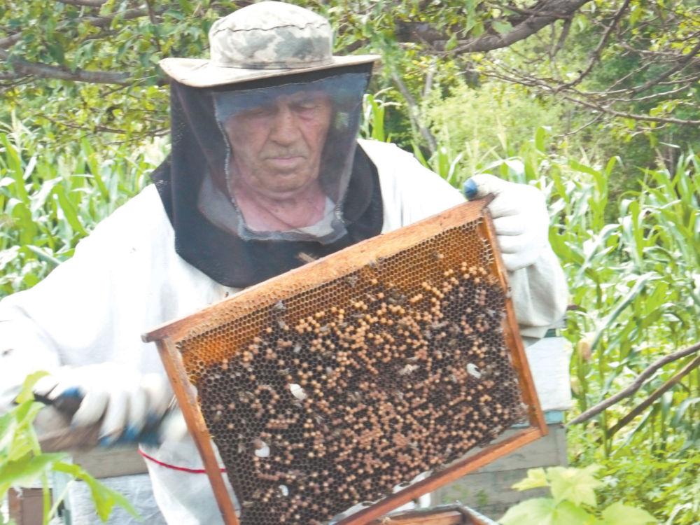 Здесь мёдом не намазано