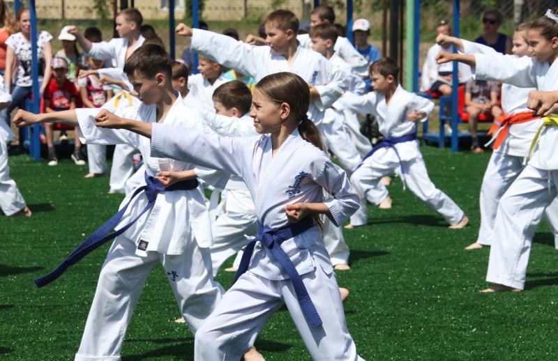 На площадку выходи! - Открытие спортплощадки (www.eao.ru)