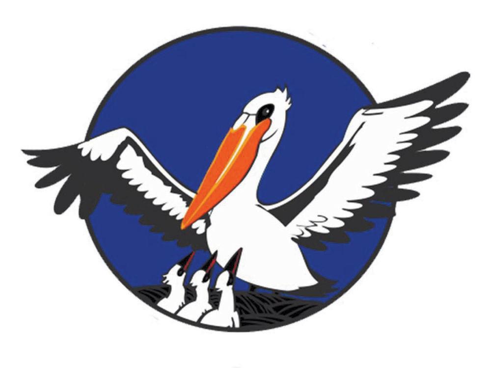 Учителя тоже  учатся - Пеликан –  символ конкурса  «Учитель года России»