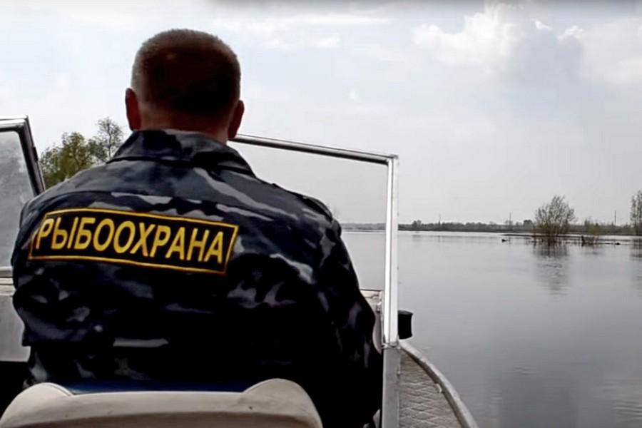 Инспекторы рыбоохраны в дефиците…
