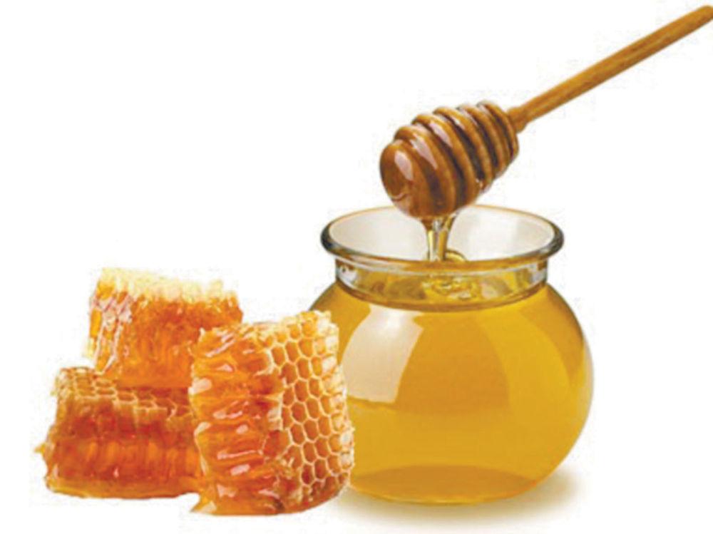 Кооперация  вокруг мёда
