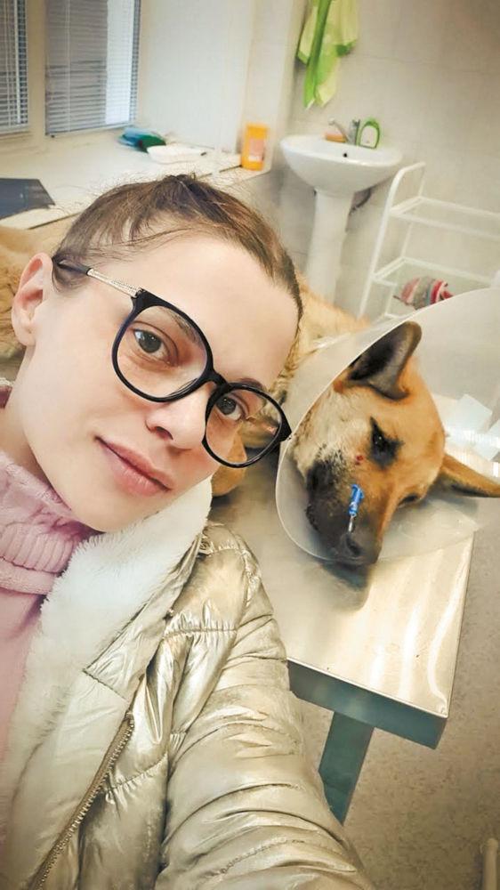 Жил-был пёс… - Пёс после операции