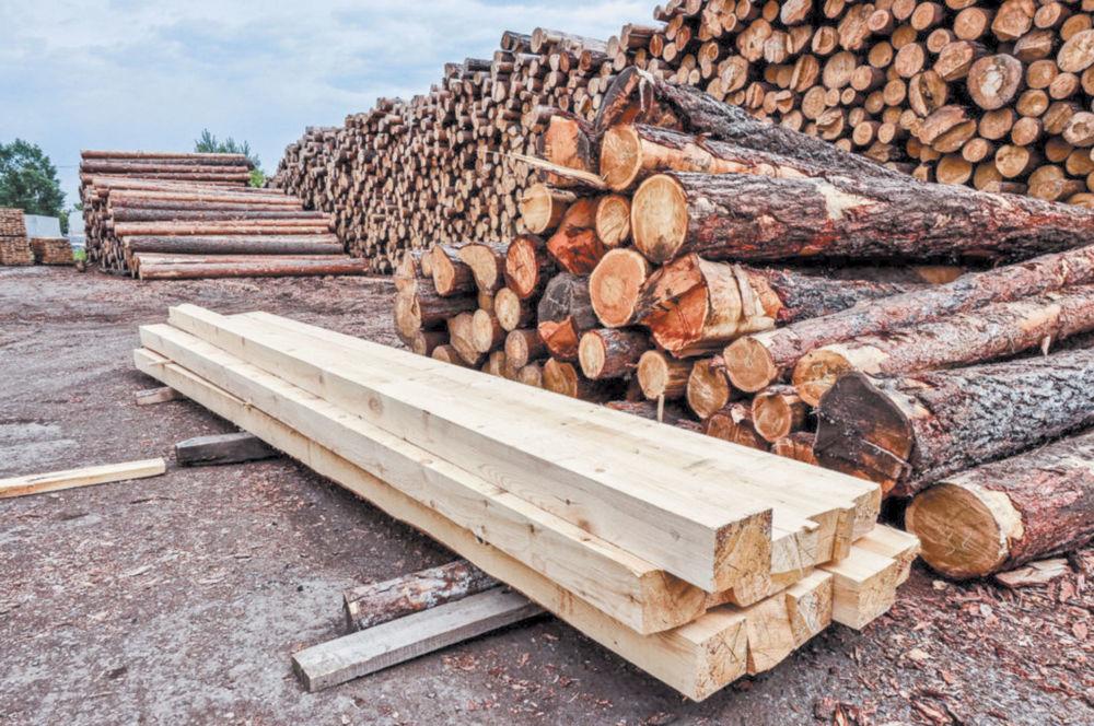 Согласились на древесину